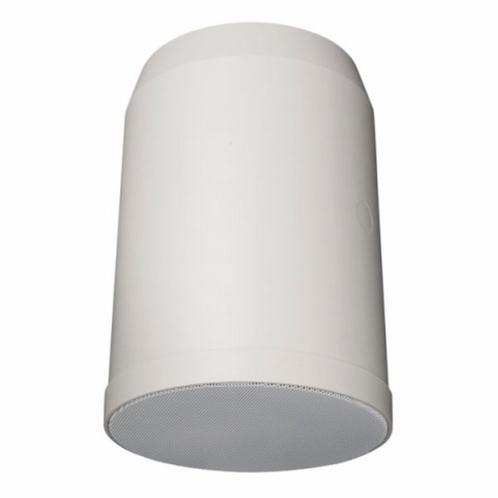 "DAP HS-620P 100V 6"" 20W Unidirect.hanging speaker (per stuk)"