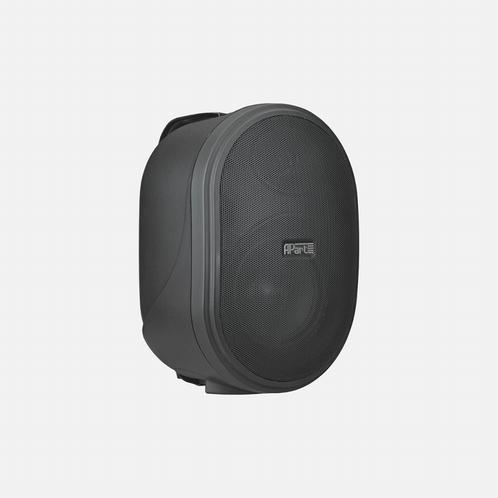 APART Audio OVO5T 80W 16 Ohm / 30W 100V (per stuk)