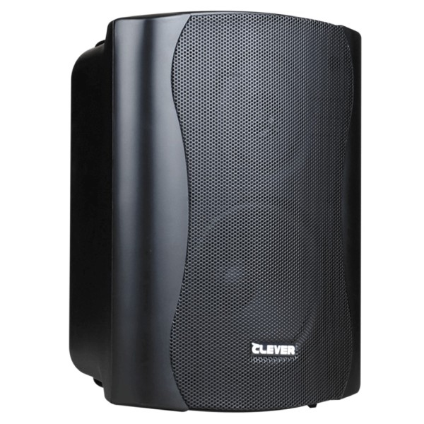 CLEVER ACOUSTICS BGS 35T 100V Speakers (paar)