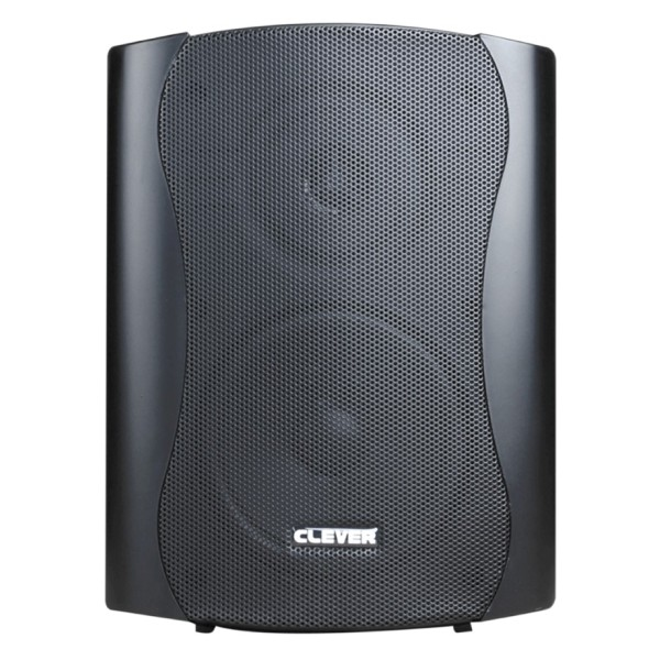 CLEVER ACOUSTICS BGS 50 8 Ohm Speakers (paar)