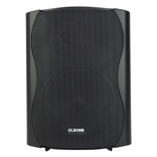 CLEVER ACOUSTICS BGS 50T 100V/ 8 Ohm Speakers (paar)