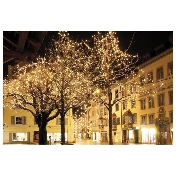 SHOWTEC LED Curtain Licht WW - 900 LEDs/36 LEDs/3 meter