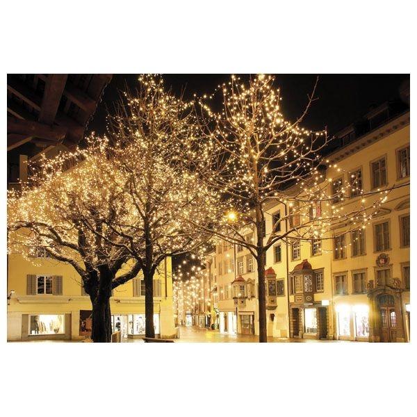 SHOWTEC LED Curtain Light WW - 1200 LEDs/60LEDs/6 meter