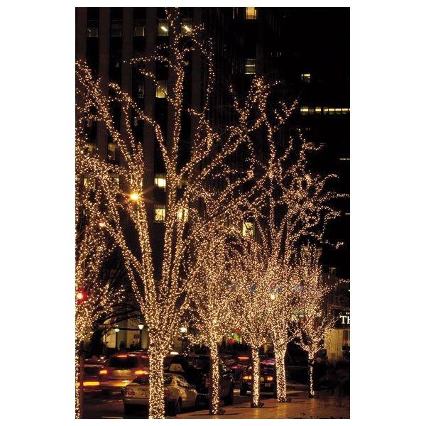 SHOWTEC LED String Light WW - 200 LEDs - 20 meter