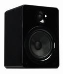APART Audio VINCI5 (per stuk)