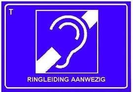 Ringleiding
